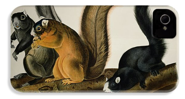 Fox Squirrel IPhone 4 / 4s Case by John James Audubon