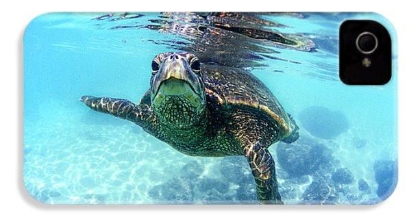 friendly Hawaiian sea turtle  IPhone 4 Case