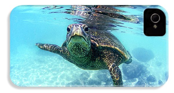 friendly Hawaiian sea turtle  IPhone 4 Case by Sean Davey