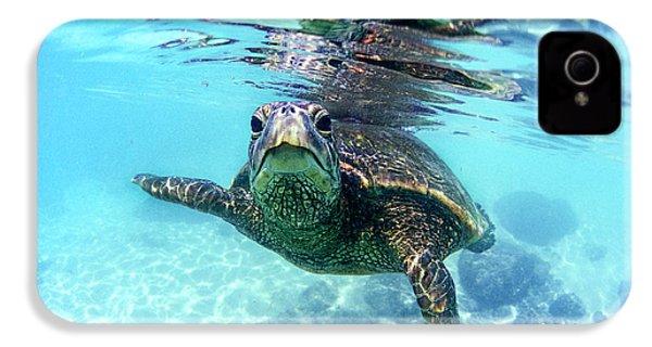friendly Hawaiian sea turtle  IPhone 4 Case by Sean Davey