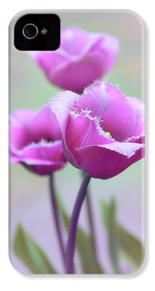 IPhone 4 Case featuring the photograph Fringe Tulips by Jessica Jenney