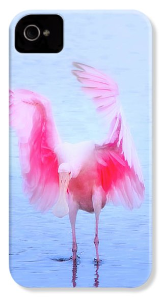 From The Heavens IPhone 4 Case by Mark Andrew Thomas