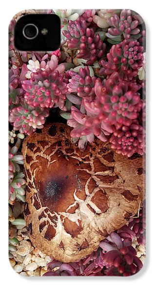 Fungus And Succulents IPhone 4 Case