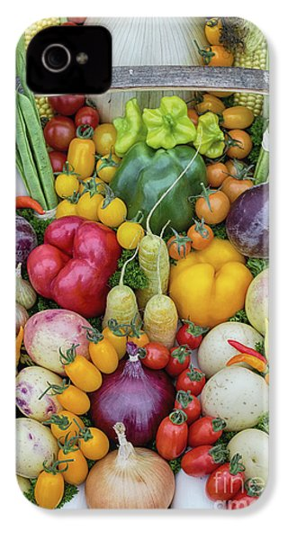 Garden Produce IPhone 4 / 4s Case by Tim Gainey