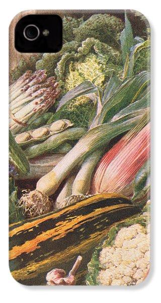 Garden Vegetables IPhone 4 Case by Louis Fairfax Muckley