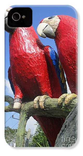 Giant Macaws IPhone 4 Case by Randall Weidner