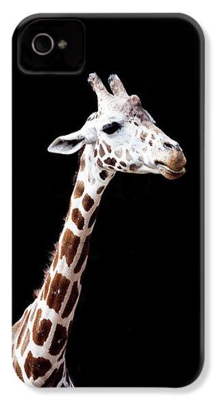 Giraffe IPhone 4 Case by Lauren Mancke
