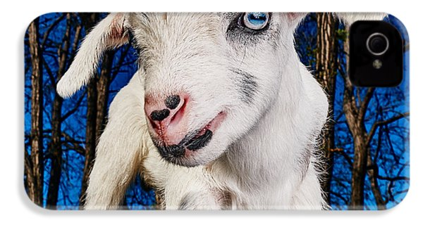 Goat High Fashion Runway IPhone 4 Case by TC Morgan