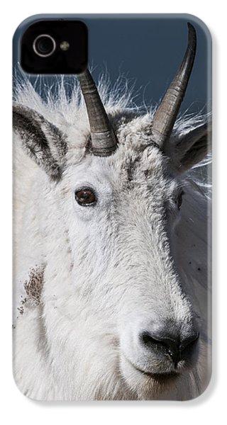 Goat Portrait IPhone 4 Case by Gary Lengyel