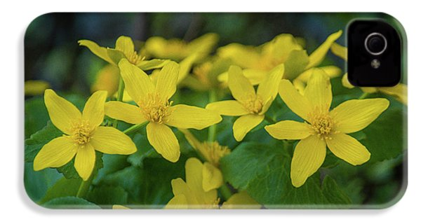 IPhone 4 Case featuring the photograph Gold In The Marsh by Bill Pevlor