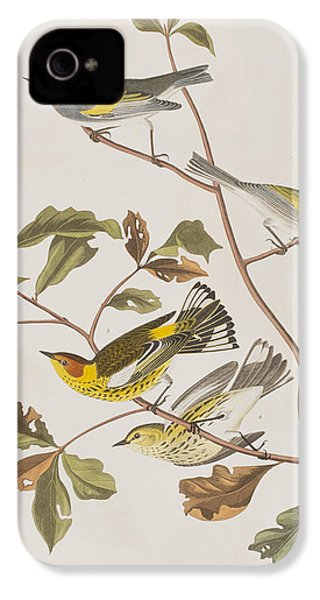 Golden Winged Warbler Or Cape May Warbler IPhone 4 Case