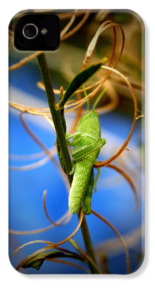 Grassy Hopper IPhone 4 / 4s Case by Chris Brannen