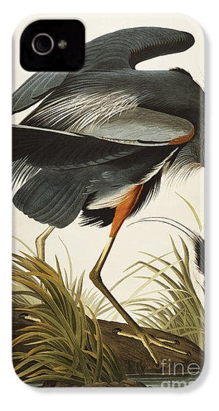 Great Blue Heron IPhone 4 Case