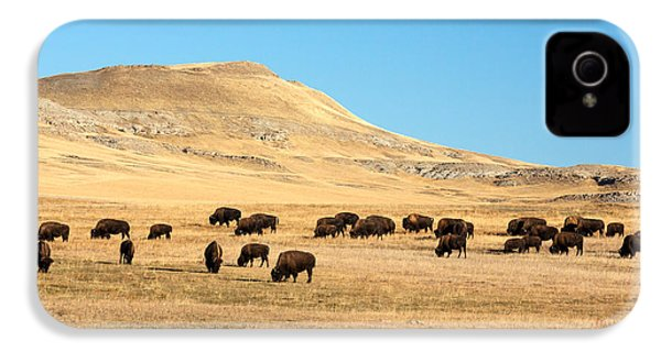 Great Plains Buffalo IPhone 4 Case by Todd Klassy