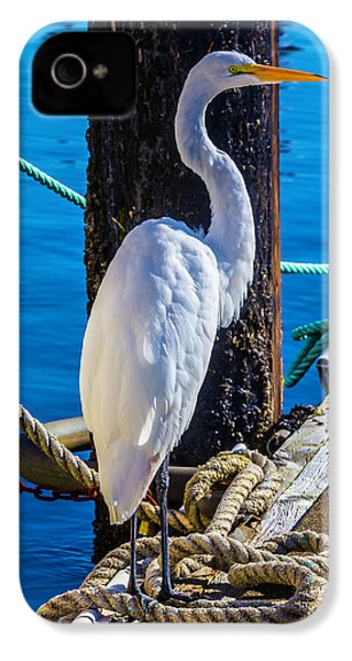 Great White Heron IPhone 4 Case by Garry Gay
