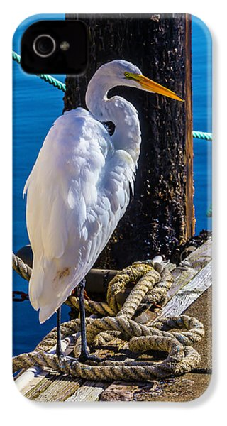 Great White Heron On Boat Dock IPhone 4 Case by Garry Gay