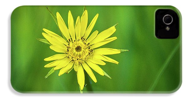 IPhone 4 Case featuring the photograph Hello Wild Yellow by Bill Pevlor