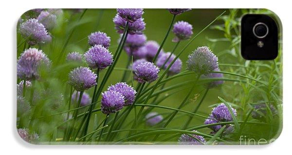 Herb Garden. IPhone 4 Case