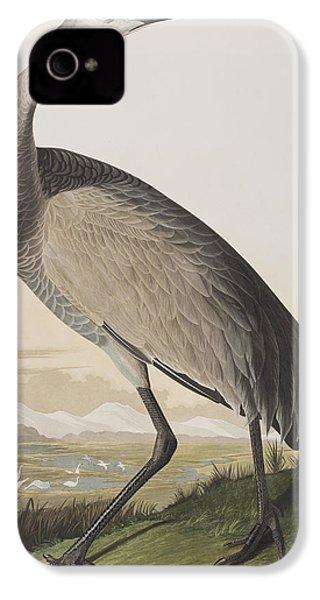 Hooping Crane IPhone 4 Case by John James Audubon