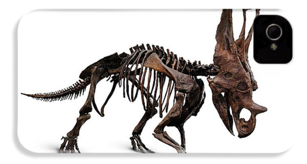 Horned Dinosaur Skeleton IPhone 4 / 4s Case by Oleksiy Maksymenko