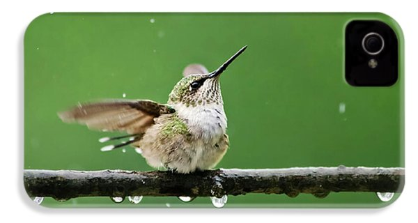 Hummingbird In The Rain IPhone 4 Case by Christina Rollo