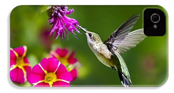 Hummingbird With Flower IPhone 4 Case by Christina Rollo