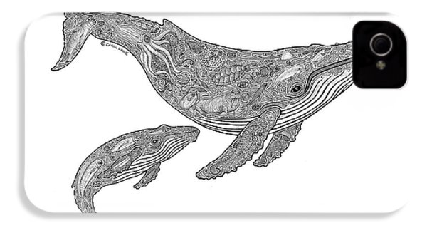 Humpback And Calf IPhone 4 Case by Carol Lynne