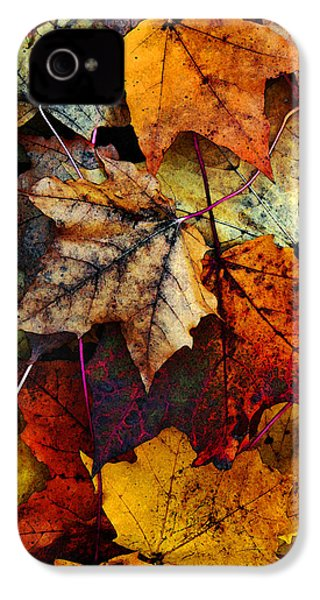 I Love Fall 2 IPhone 4 Case by Joanne Coyle