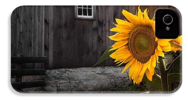 In The Light IPhone 4 Case by Bill Wakeley