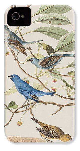 Indigo Bird IPhone 4 Case by John James Audubon