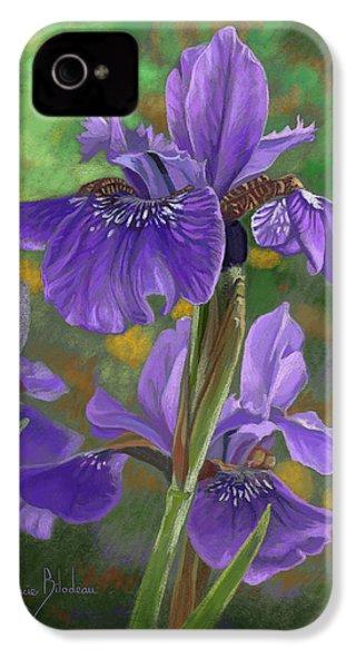 Irises IPhone 4 Case by Lucie Bilodeau