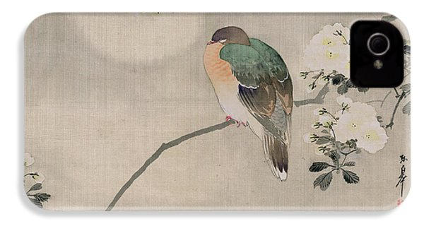 Japanese Silk Painting Of A Wood Pigeon IPhone 4 Case by Japanese School