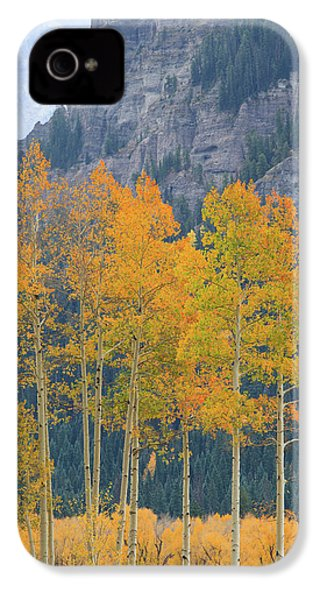 Just The Ten Of Us IPhone 4 Case by David Chandler