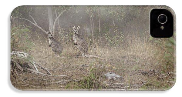 Kangaroos In The Mist IPhone 4 Case by Az Jackson