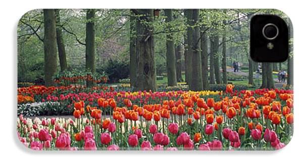 Keukenhof Garden, Lisse, The Netherlands IPhone 4 / 4s Case by Panoramic Images