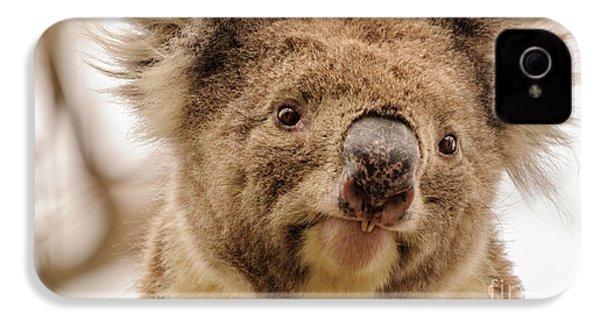 Koala 4 IPhone 4 Case by Werner Padarin