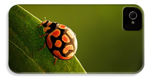 Ladybug  On Green Leaf IPhone 4 Case by Johan Swanepoel