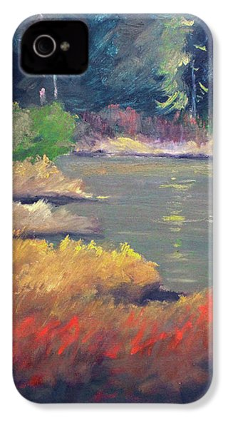 IPhone 4 Case featuring the painting Lagoon by Nancy Merkle