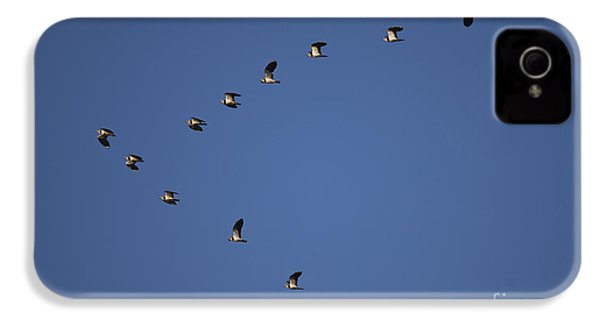 Lapwing Flock IPhone 4 Case by Per-Olov Eriksson