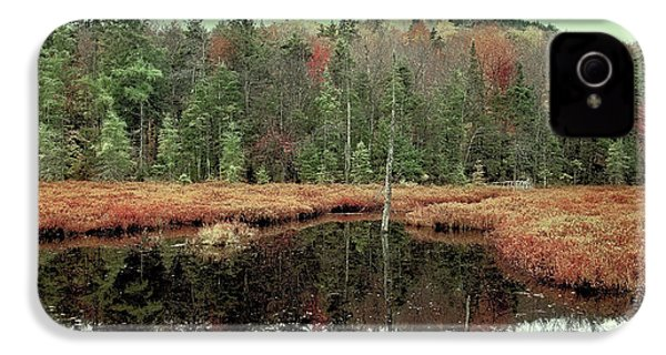 IPhone 4 Case featuring the photograph Last Of Autumn On Fly Pond by David Patterson