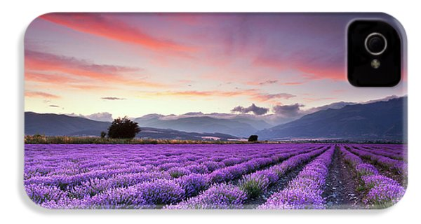 Lavender Season IPhone 4 Case