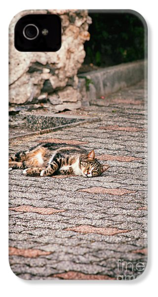 IPhone 4 Case featuring the photograph Lazy Cat    by Silvia Ganora