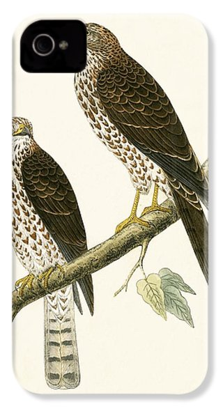 Levant Sparrow Hawk IPhone 4 / 4s Case by English School