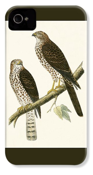 Levant Sparrow Hawk IPhone 4 Case by English School