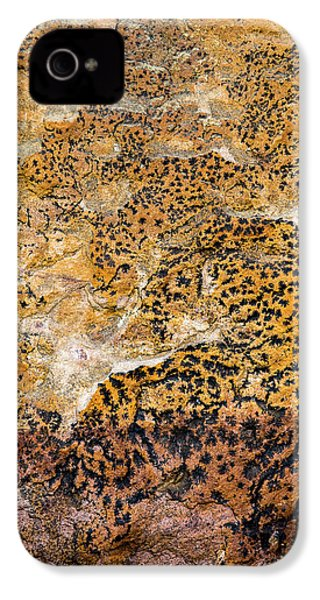 IPhone 4 Case featuring the photograph Lichen Abstract, Bhimbetka, 2016 by Hitendra SINKAR