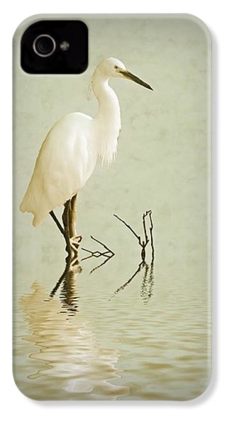 Little Egret IPhone 4 / 4s Case by Sharon Lisa Clarke