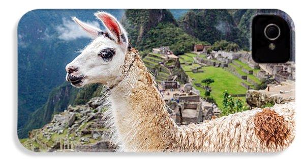 Llama At Machu Picchu IPhone 4 Case