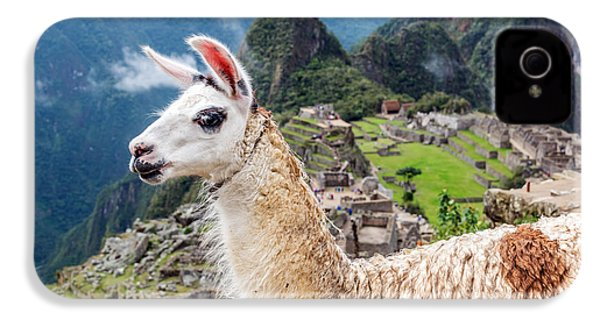 Llama At Machu Picchu IPhone 4 / 4s Case by Jess Kraft