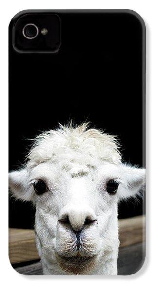 Llama IPhone 4 Case