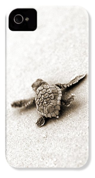 Loggerhead IPhone 4 Case by Michael Stothard